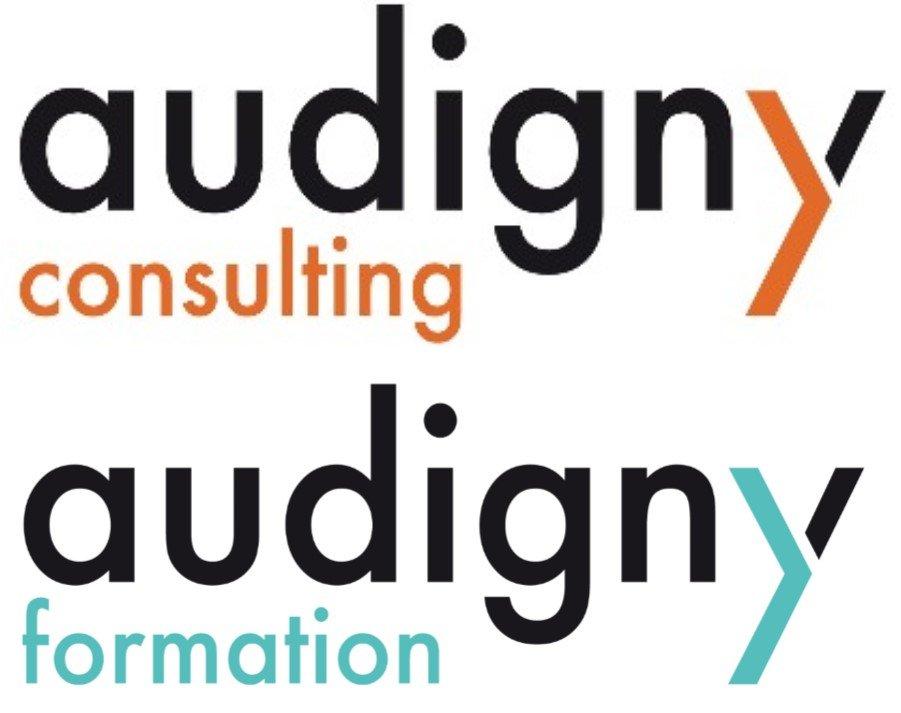 Audigny Double logo