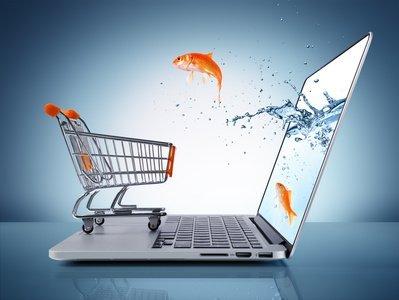 goldfish in cart - e-commerce concept